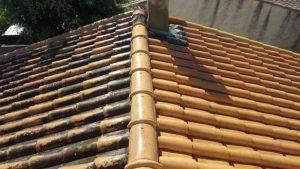 demoussage de toiture
